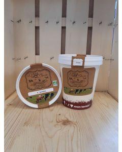 Sorbet au yaourt Cassis Fermière  de Souzy- direct producteur