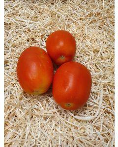 Tomate ronde roma ou allongée ou olivette