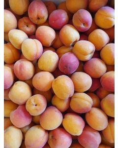 Abricot (très peu)