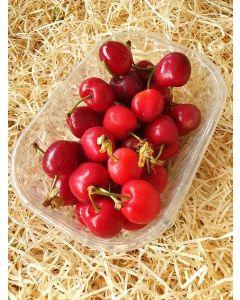 Cerise rouge Burlat Conversion 250g