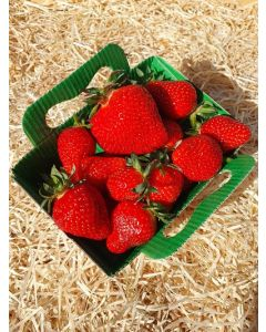 Fraise confiture/coulis 250g  Antigaspi