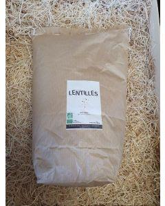 Lentilles vertes 5kg (6,00€/kg)