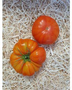 Tomate ancienne (Marmande, Noire de Crimée, Ananas)