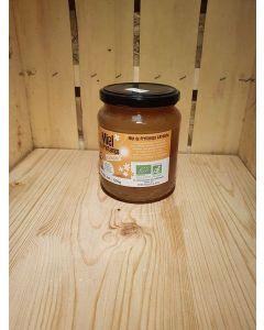 Miel de Printemps 500g (22,00€/kg)